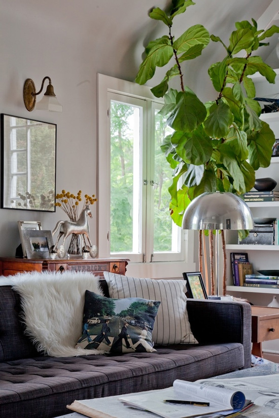 DECORATING-WITH-PLANTS_INDOOR-PLANTS_INTERIOR-DESIGN_DECORATING-BLOG-4
